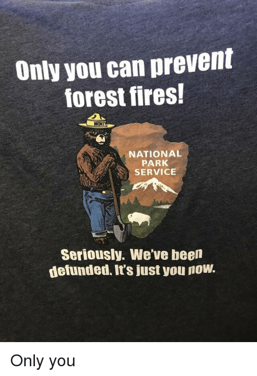 Been, Forest, and Can: Only you can prevent  forest fires!  WOK  NATIONAL  PARK  SERVICE  Seriously. We've been  defunded. It's just you now Only you