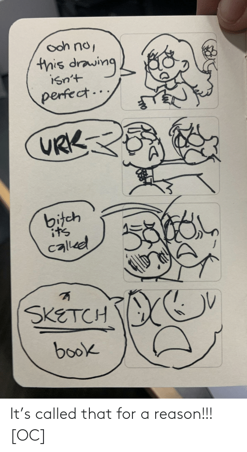 ooh: ooh no,  this drawing  isn't  perfect..  URK  bitch  it's  called  SKETCH  book It's called that for a reason!!! [OC]