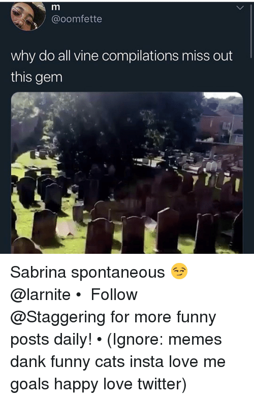 Cats, Dank, and Funny: @oomfette  why do all vine compilations miss out  this gem Sabrina spontaneous 😏 @larnite • ➫➫➫ Follow @Staggering for more funny posts daily! • (Ignore: memes dank funny cats insta love me goals happy love twitter)