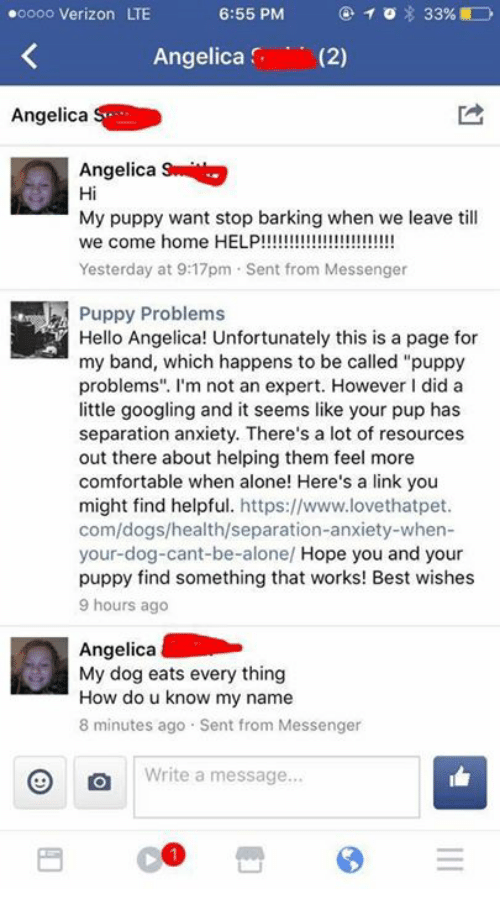 """angelica: oooo Verizon LTE  Angelica (2)  Angelica  Angelica  Hi  My puppy want stop barking when we leave till  Yesterday at 9:17pm Sent from Messenger  Puppy Problems  Hello Angelica! Unfortunately this is a page for  my band, which happens to be called """"puppy  problems"""". I'm not an expert. However I did a  little googling and it seems like your pup has  separation anxiety. There's a lot of resources  out there about helping them feel more  comfortable when alone! Here's a link you  might find helpful. https://www.lovethatpet  com/dogs/health/separation-anxiety-when-  your-dog-cant-be-alone/ Hope you and your  puppy find something that works! Best wishes  9 hours ago  Angelica  My dog eats every thing  How do u know my name  8 minutes ago Sent from Messenger  Write a message"""
