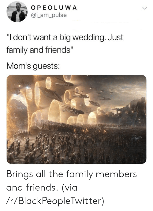 "Family Members: OPEOLUWA  @i_am_pulse  ""I don't want a big wedding. Just  family and friends""  Mom's guests: Brings all the family members and friends. (via /r/BlackPeopleTwitter)"