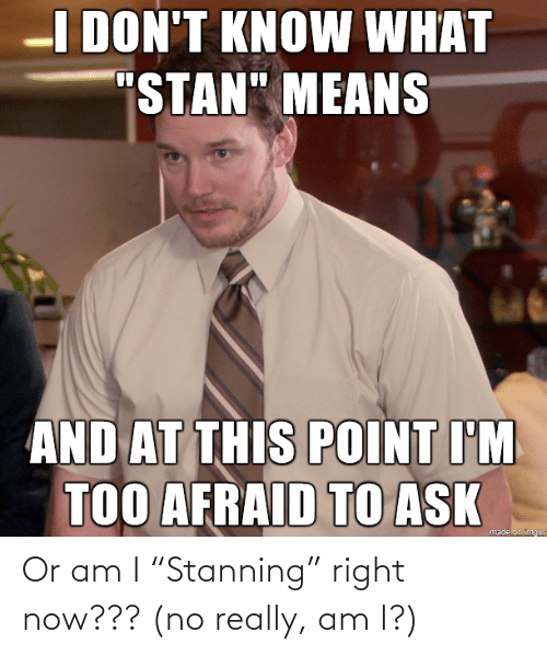 """really: Or am I """"Stanning"""" right now??? (no really, am I?)"""