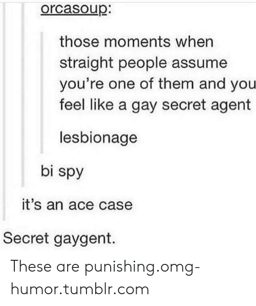 secret agent: orcasoup.  those moments when  straight people assume  you're one of them and you  feel like a gay secret agent  lesbionage  bi spy  it's an ace case  Secret gaygent. These are punishing.omg-humor.tumblr.com