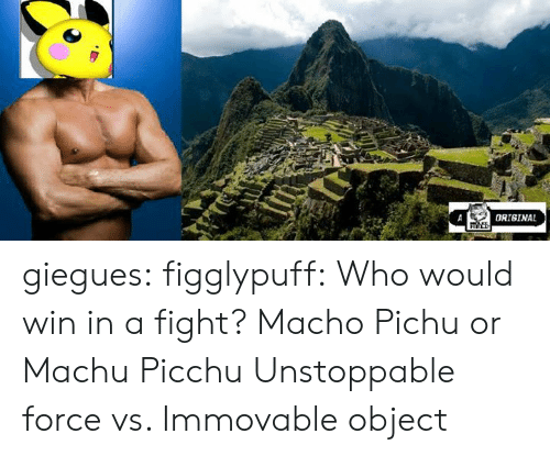 machu picchu: ORIGINAL giegues:  figglypuff:  Who would win in a fight? Macho Pichu or Machu Picchu  Unstoppable force vs. Immovable object