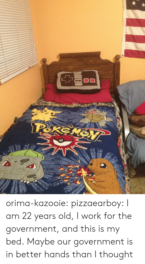 22 Years Old: orima-kazooie:  pizzaearboy:  I am 22 years old, I work for the government, and this is my bed.  Maybe our government is in better hands than I thought