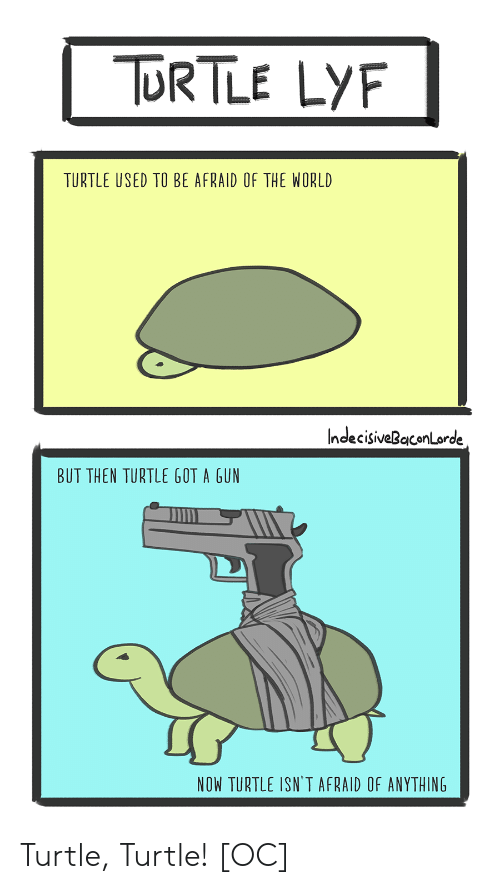 Turtle, World, and Got: ORTLE LY  TURTLE USED TO BE AFRAID OF THE WORLD  IndecisiveBaconLorde  BUT THEN TURTLE GOT A GUN  in  NOW TURTLE ISN'T AFRAID OF ANYTHING Turtle, Turtle! [OC]