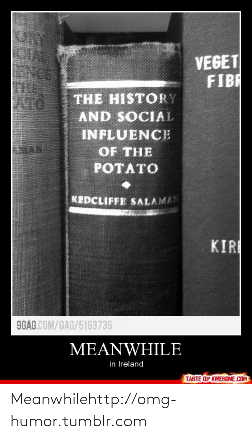 Salaman: ORY  CLA  NCE  VEGET  FIBR  THE HISTORY  AND SOCIAL  ATO  INFLUENCE  OF THE  POTATO  REDCLIFFE SALAMAN  KIR  9GAG.COM/GAG/5163736  MEANWHILE  in Ireland  TASTE OF AWESOME.COM Meanwhilehttp://omg-humor.tumblr.com