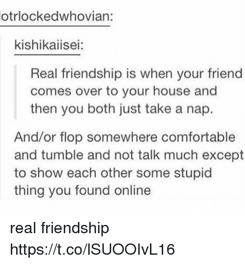 stupider: otrlockedwhovian:  kishikaiisei:  Real friendship is when your friend  comes over to your house and  then you both just take a nap.  And/or flop somewhere comfortable  and tumble and not talk much except  to show each other some stupid  thing you found online real friendship https://t.co/lSUOOIvL16