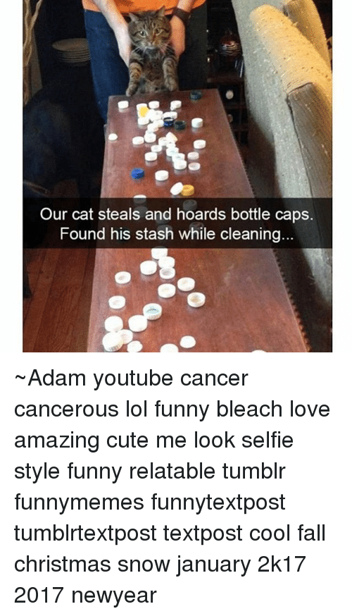Newyears: Our cat steals and hoards bottle caps.  Found his stash while cleaning ~Adam youtube cancer cancerous lol funny bleach love amazing cute me look selfie style funny relatable tumblr funnymemes funnytextpost tumblrtextpost textpost cool fall christmas snow january 2k17 2017 newyear