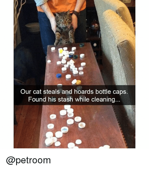 stash: Our cat steals and hoards bottle caps.  Found his stash while cleaning @petroom