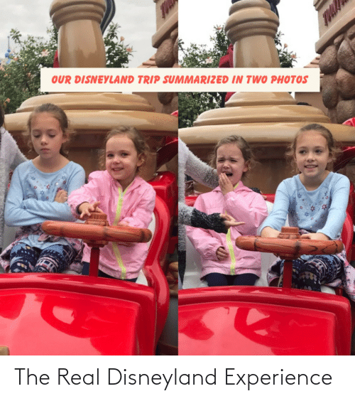 trip: OUR DISNEYLAND TRIP SUMMARIZED IN TWO PHOTOS The Real Disneyland Experience