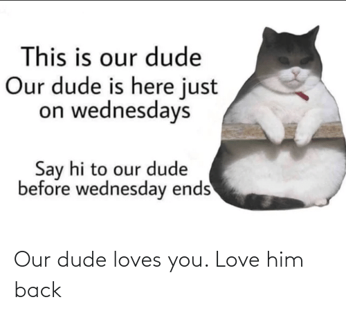 loves: Our dude loves you. Love him back