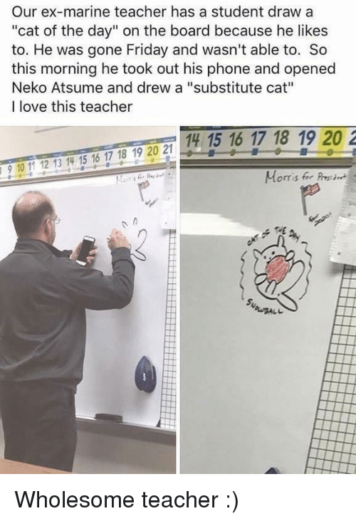"""Friday, Love, and Phone: Our ex-marine teacher has a student draw a  """"cat of the day"""" on the board because he likes  to. He was gone Friday and wasn't able to. So  this morning he took out his phone and opened  Neko Atsume and drew a """"substitute cat""""  I love this teacher  14 15 16 17 18 19 20 2  910 11 12 13 14 15 16 17 18 19 20 2  Morris for Pres Wholesome teacher :)"""