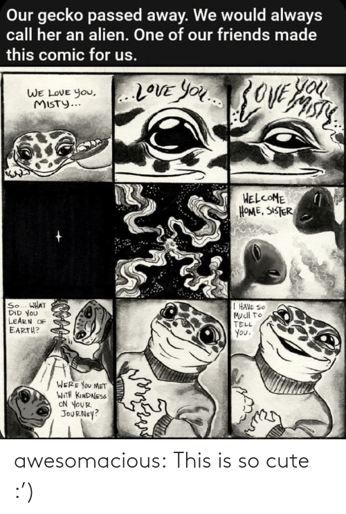 Passed: Our gecko passed away. We would always  call her an alien. One of our friends made  this comic for us.  You  20VE YOU3OVE  WE LOVE you,..LOVE YOu  WE LOVE You,  MISTY...  HELCOME  HOME, SISTER  So... WHAT  DID YOU  LEARN OF  EARTH?  I HAVE SO  MucH TO  TELL  You.  WERE YOU MET  WITH KINDNESS  ON YOUR  JOURNEY? awesomacious:  This is so cute :')