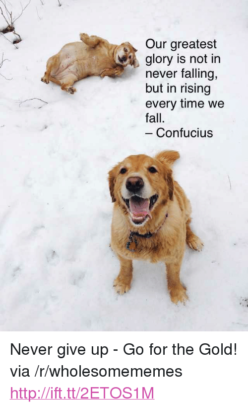 "For The Gold: Our greatest  glory is not in  never falling,  but in rising  every time we  fall.  Confucius <p>Never give up - Go for the Gold! via /r/wholesomememes <a href=""http://ift.tt/2ETOS1M"">http://ift.tt/2ETOS1M</a></p>"