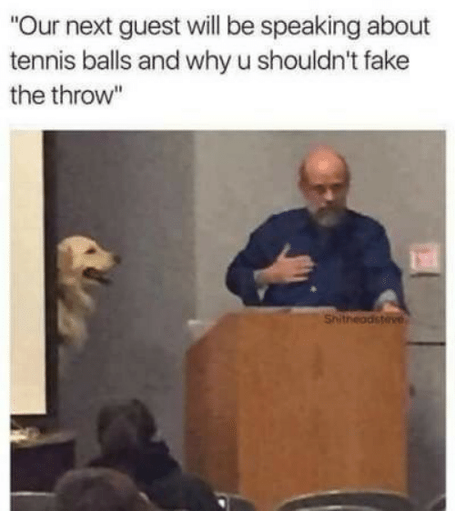 "Fake, Tennis, and Next: ""Our next guest will be speaking about  tennis balls and why u shouldn't fake  the throw""  Shitheadsteve"
