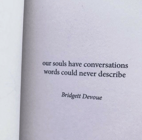 Souls: our souls have conversations  words could never describe  Bridgett Devoue