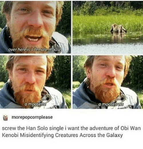 Hans Solo: over here is a female moose  a mooSet  a moose  morepopcornplease  screw the Han Solo single i want the adventure of Obi Wan  Kenobi Misidentifying Creatures Across the Galaxy