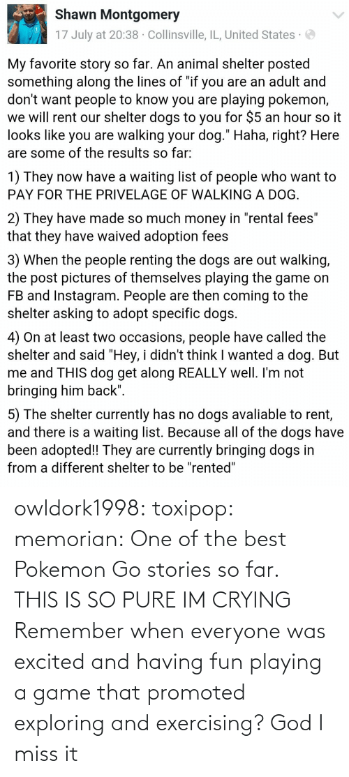 God I: owldork1998:  toxipop:  memorian:  One of the best Pokemon Go stories so far.   THIS IS SO PURE IM CRYING    Remember when everyone was excited and having fun playing a game that promoted exploring and exercising? God I miss it