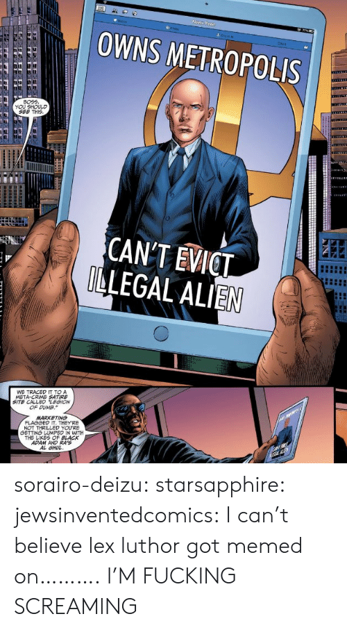 Memed: OWNS METROPOLIS  Chat  BOEE  YOU SHOULD  SEE THIS  CANT EVICT  LEGAL ALIEN  WE TRACED IT TO A  META-CRIME SATIRE  SITE CALLED LEGION  OF DUMB.  MARKETING  NOT THRILLED YOURE  白ETTNá LUMPED IN WITH  THE LIKES OF BLACK  ADAM AND RA'S  AL GHU sorairo-deizu:  starsapphire:  jewsinventedcomics:  I can't believe lex luthor got memed on……….  I'M FUCKING SCREAMING