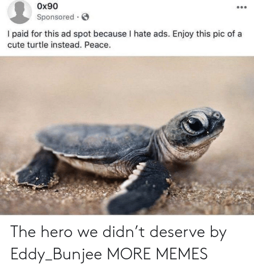 Sponsored: Ox90  Sponsored  I paid for this ad spot because I hate ads. Enjoy this pic of a  cute turtle instead. Peace. The hero we didn't deserve by Eddy_Bunjee MORE MEMES
