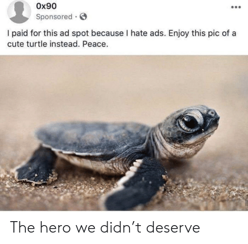 Sponsored: Ox90  Sponsored  I paid for this ad spot because I hate ads. Enjoy this pic of a  cute turtle instead. Peace. The hero we didn't deserve