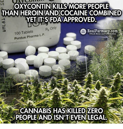 oxy: OXY CONTIN KILLS MORE PEOPLE  THAN HEROINLANDCOCAINE COMBINED  FDA  YET ITIS Rx Only  e Real Farmacy.com  100 Tablets  L. Purdue Pharma P  Fresh News and Information  CANNABIS HAS KILLEDZERO  PEOPLEAND ISN'T EVEN LEGAL