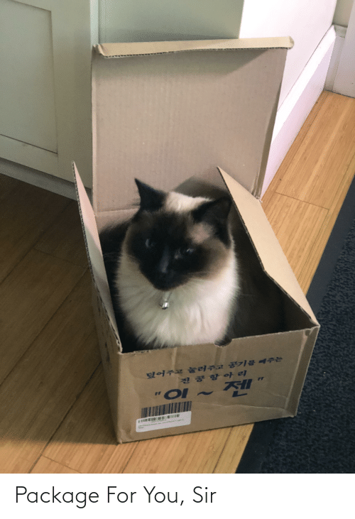 You Sir: Package For You, Sir