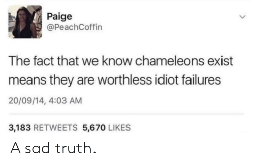 Sad, Idiot, and Truth: Paige  @PeachCoffin  The fact that we know chameleons exist  means they are worthless idiot failures  20/09/14, 4:03 AM  3,183 RETWEETS 5,670 LIKES A sad truth.