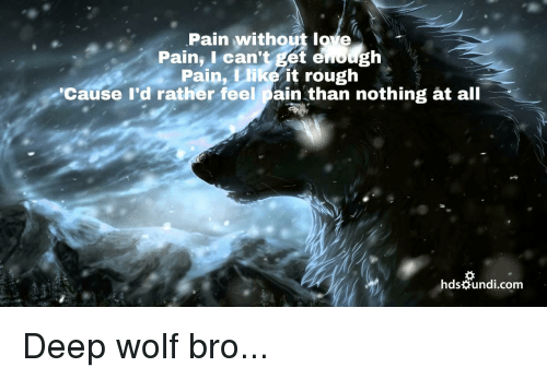 Wolf, Rough, and Pain: Pain without loe  Pain, I can't get enough  Pain, Llike it rough  Cause l'd rather feel pain than nothing at all  hdsundi.com