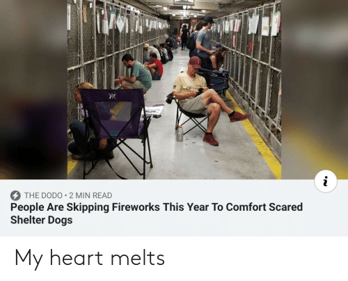 Dogs, Fireworks, and Heart: PAIS  i  People Are Skipping Fireworks This Year To Comfort Scared  Shelter Dogs  THE DODO 2 MIN READ My heart melts