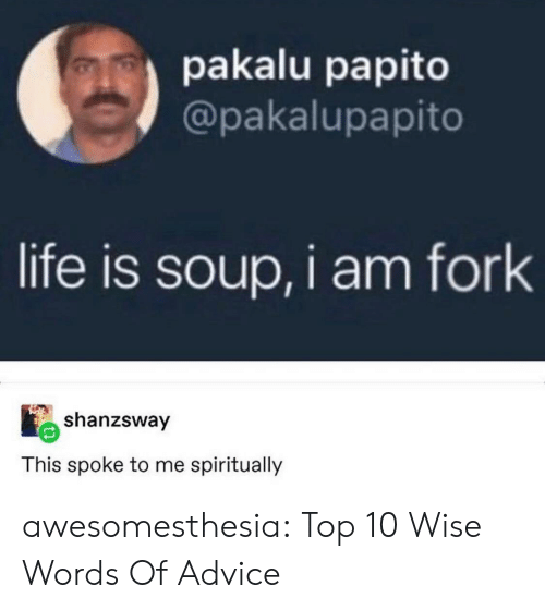 Wise Words: pakalu papito  @pakalupapito  life is soup, i am fork  shanzsway  This spoke to me spiritually awesomesthesia:  Top 10 Wise Words Of Advice
