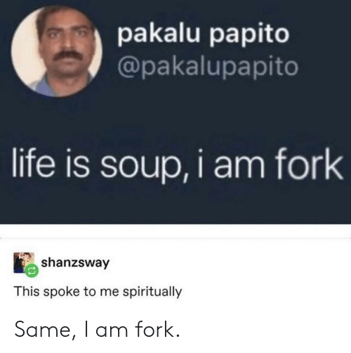 Life, Soup, and This: pakalu papito  @pakalupapito  life is soup,i am fork  shanzsway  This spoke to me spiritually Same, I am fork.