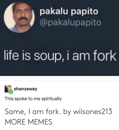 Fork: pakalu papito  @pakalupapito  life is soup,i am fork  shanzsway  This spoke to me spiritually Same, I am fork. by wilsones213 MORE MEMES