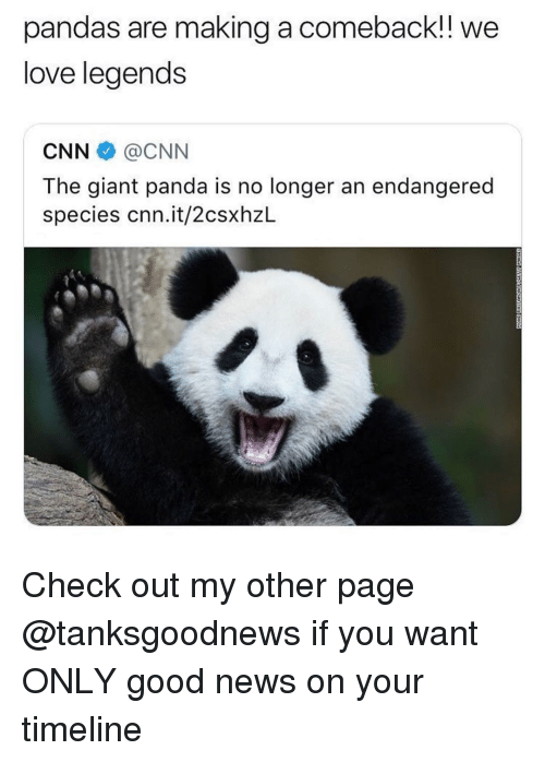 giant panda: pandas are making a comeback!! we  love legends  CNN @CNN  The giant panda is no longer an endangered  species cnn.it/2csxhzL Check out my other page @tanksgoodnews if you want ONLY good news on your timeline