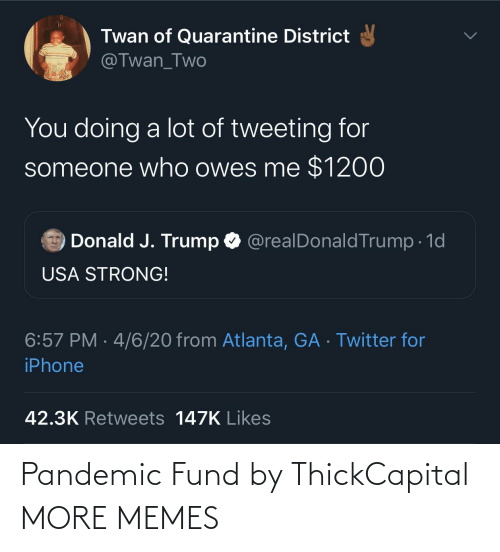 Fund: Pandemic Fund by ThickCapital MORE MEMES
