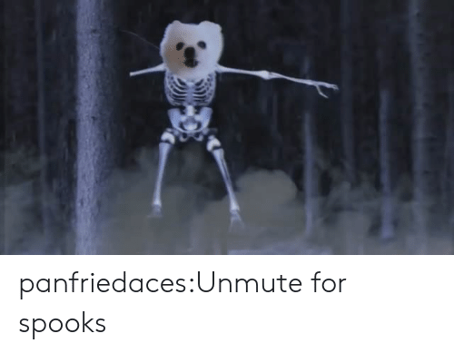 Tumblr, Blog, and Com: panfriedaces:Unmute for spooks