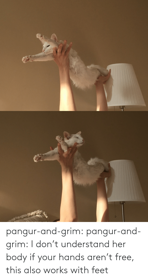 dont: pangur-and-grim: pangur-and-grim: I don't understand her body if your hands aren't free, this also works with feet