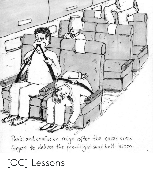 panic: Panic and confusion reiqn after the cabin crew  forgets to deliver the pre-flight seat be lt lesson [OC] Lessons