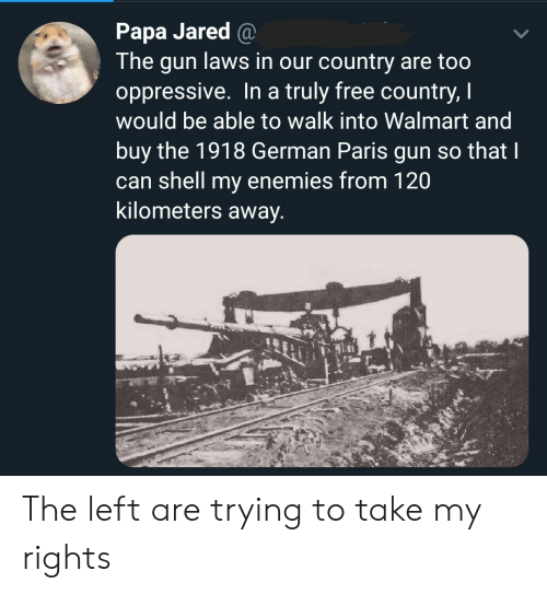 papa: Papa Jared @  The gun laws in our country are too  oppressive. In a truly free country, I  would be able to walk into Walmart and  buy the 1918 German Paris gun so that I  can shell my enemies from 120  kilometers away. The left are trying to take my rights