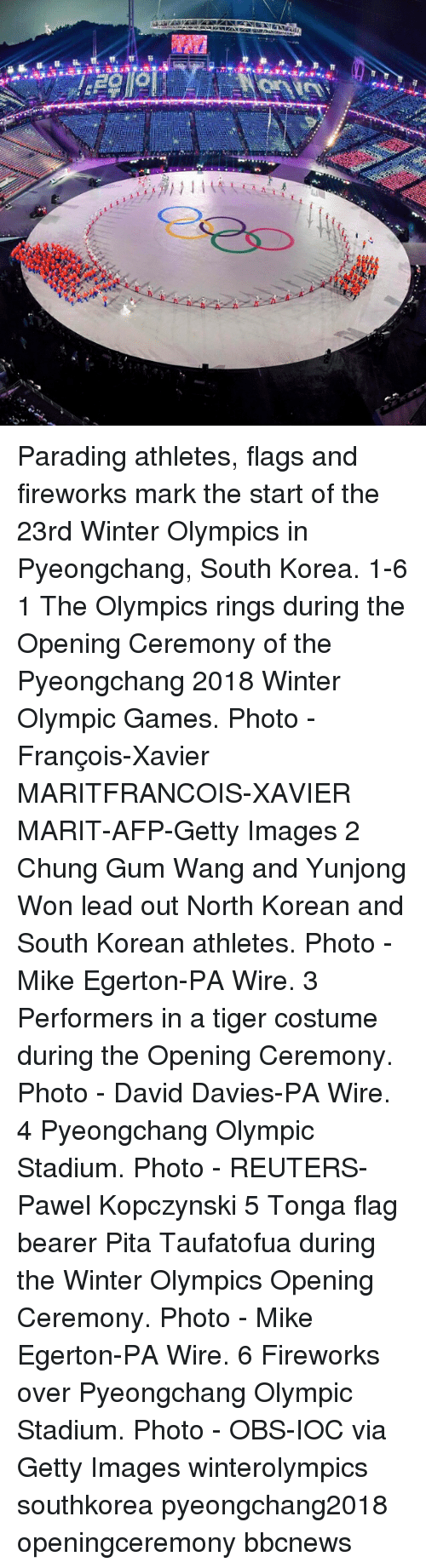 pita: Parading athletes, flags and fireworks mark the start of the 23rd Winter Olympics in Pyeongchang, South Korea. 1-6 1 The Olympics rings during the Opening Ceremony of the Pyeongchang 2018 Winter Olympic Games. Photo - François-Xavier MARITFRANCOIS-XAVIER MARIT-AFP-Getty Images 2 Chung Gum Wang and Yunjong Won lead out North Korean and South Korean athletes. Photo - Mike Egerton-PA Wire. 3 Performers in a tiger costume during the Opening Ceremony. Photo - David Davies-PA Wire. 4 Pyeongchang Olympic Stadium. Photo - REUTERS-Pawel Kopczynski 5 Tonga flag bearer Pita Taufatofua during the Winter Olympics Opening Ceremony. Photo - Mike Egerton-PA Wire. 6 Fireworks over Pyeongchang Olympic Stadium. Photo - OBS-IOC via Getty Images winterolympics southkorea pyeongchang2018 openingceremony bbcnews