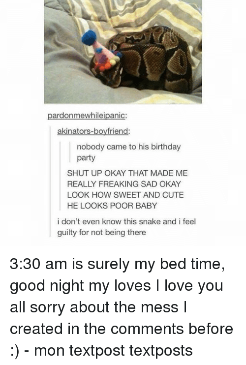 Akinators: pardonmewhileipanic:  akinators-boyfriend:  nobody came to his birthday  party  SHUT UP OKAY THAT MADE ME  REALLY FREAKING SAD OKAY  LOOK HOW SWEET AND CUTE  HE LOOKS POOR BABY  i don't even know this snake and i feel  guilty for not being there 3:30 am is surely my bed time, good night my loves I love you all sorry about the mess I created in the comments before :) - mon textpost textposts