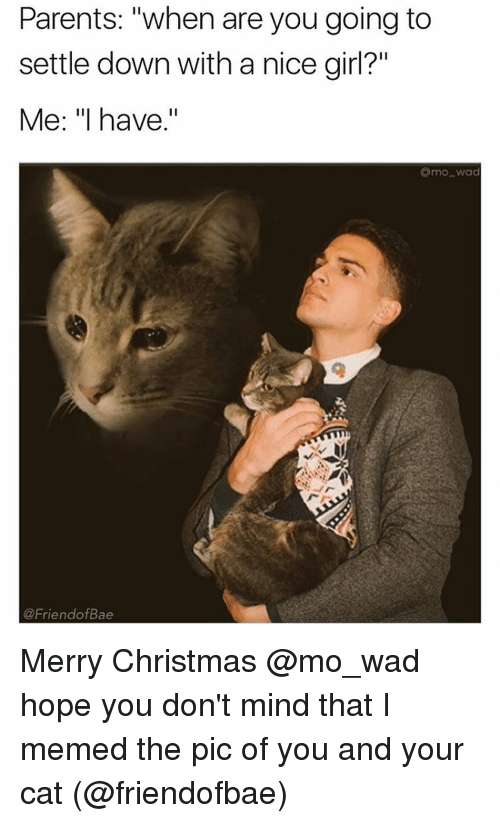"Nice Girles: Parents: ""when are you going to  settle down with a nice girl?""  Me: ""I have.""  Omo wad  @Friend ofBae Merry Christmas @mo_wad hope you don't mind that I memed the pic of you and your cat (@friendofbae)"