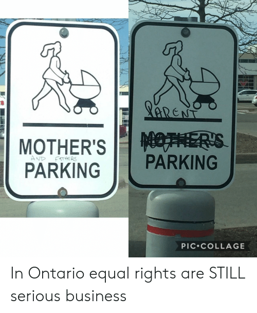 ontario: PARKINGPARKING  PIC.COLLAGE In Ontario equal rights are STILL serious business