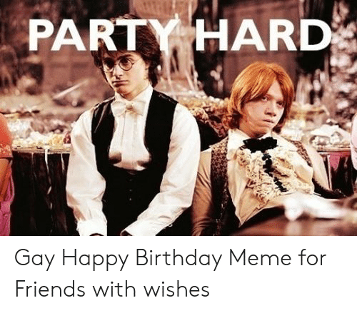 Gay Happy Birthday Meme: PARTY HARD Gay Happy Birthday Meme for Friends with wishes