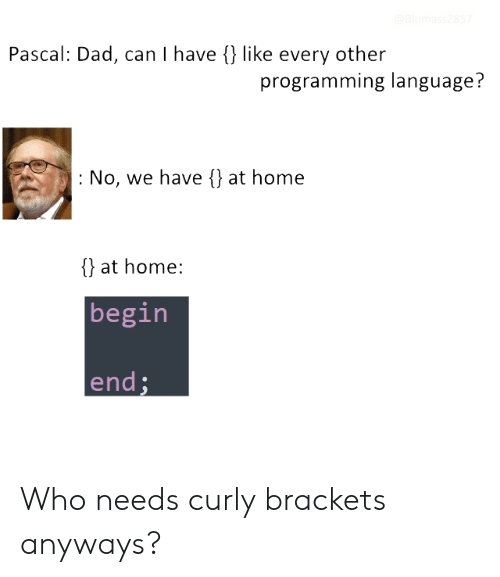 Dad, Home, and Programming: Pascal: Dad, can I have {) like every other  programming language?  : No, we have {) at home  {} at home:  begin  end Who needs curly brackets anyways?