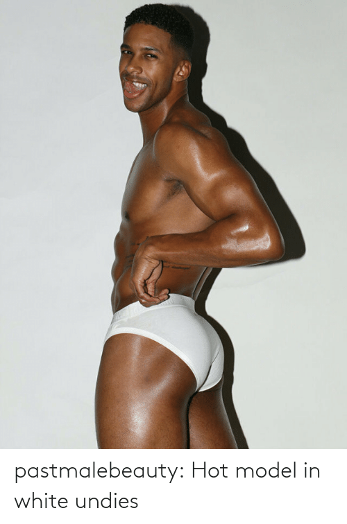 model: pastmalebeauty:  Hot model in white undies