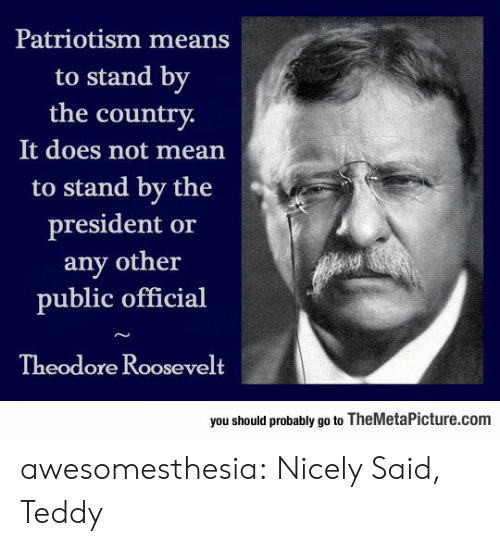 Tumblr, Blog, and Mean: Patriotism means  to stand by  the country  It does not mean  to stand by the  president or  any other  public official  Theodore Roosevelt  you should probably go to TheMetaPicture.com awesomesthesia:  Nicely Said, Teddy