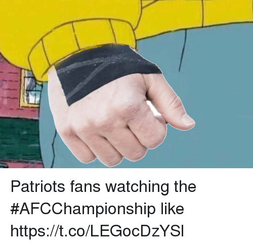 Nfl, Patriotic, and Like: Patriots fans watching the #AFCChampionship like https://t.co/LEGocDzYSl