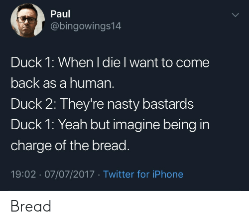 Iphone, Nasty, and Twitter: Paul  @bingowings14  Duck 1: When I die I want to come  back as a human.  Duck 2: They're nasty bastards  Duck 1: Yeah but imagine being in  charge of the bread  19:02 07/07/2017 Twitter for iPhone Bread
